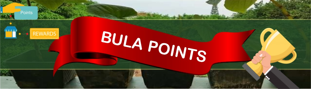 bula points